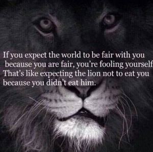 Lion Fairness